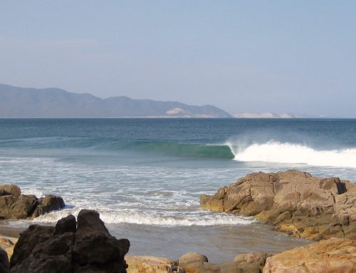 Las Palmeras Surf Camp is Open 2021