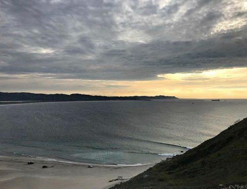 Las Palmeras Surf Camp Opens for 2020